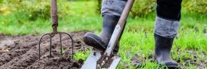 Spring Gardening Essential Tips