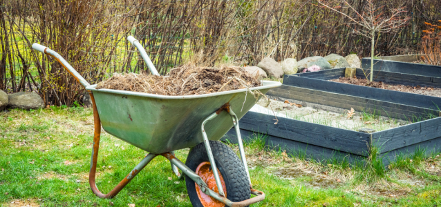 A wheelbarrow in a garden