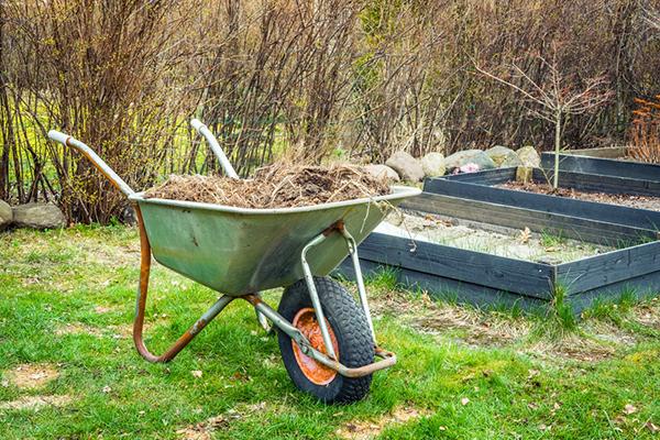Spring Clean Flower beds in your garden