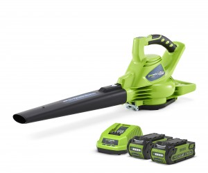 Greenworks GD040BVK2 Cordless 40v Garden Leaf Blower & Vacuum 185mph with 2x Batts