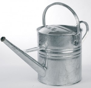 Galvanised Watering Can with No Rose (Various Sizes)