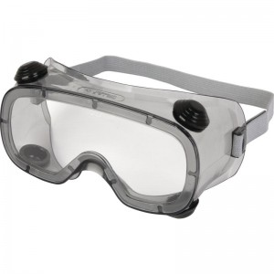 Delta Plus RUIZ 1 Safety Goggles Clear Polycarbonate Lens